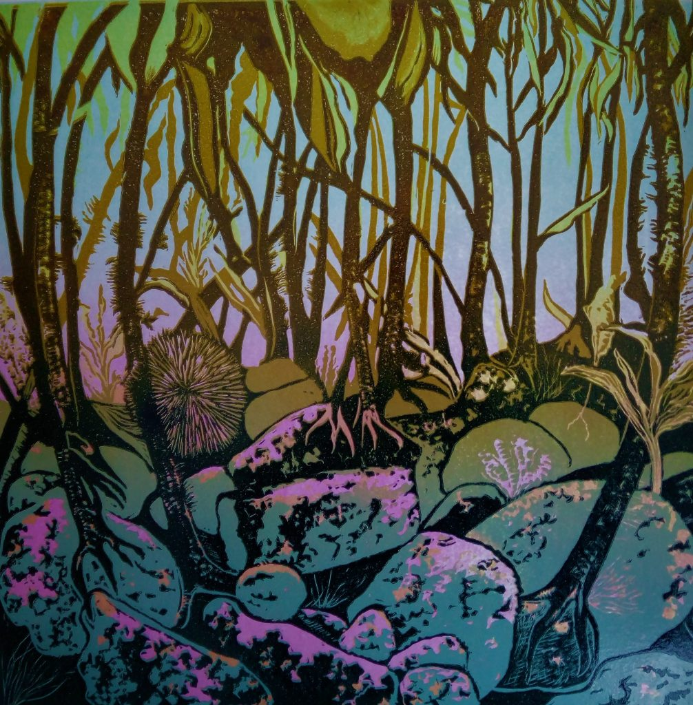 Kelp Forest, Ocean World series
