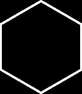 logo-shape